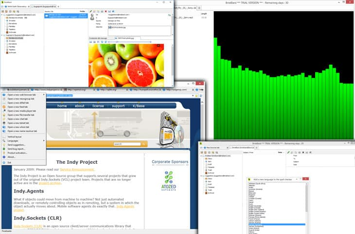 BriskBard Browser Review