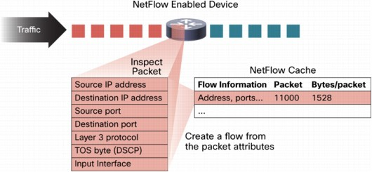 Netflow and Flow cache entry image