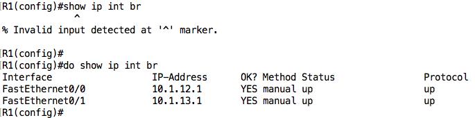 invalid input detected showip cmd