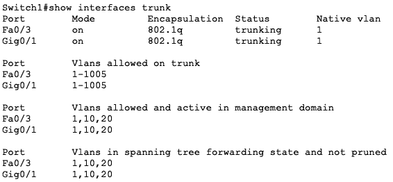 trunk ports command sw1